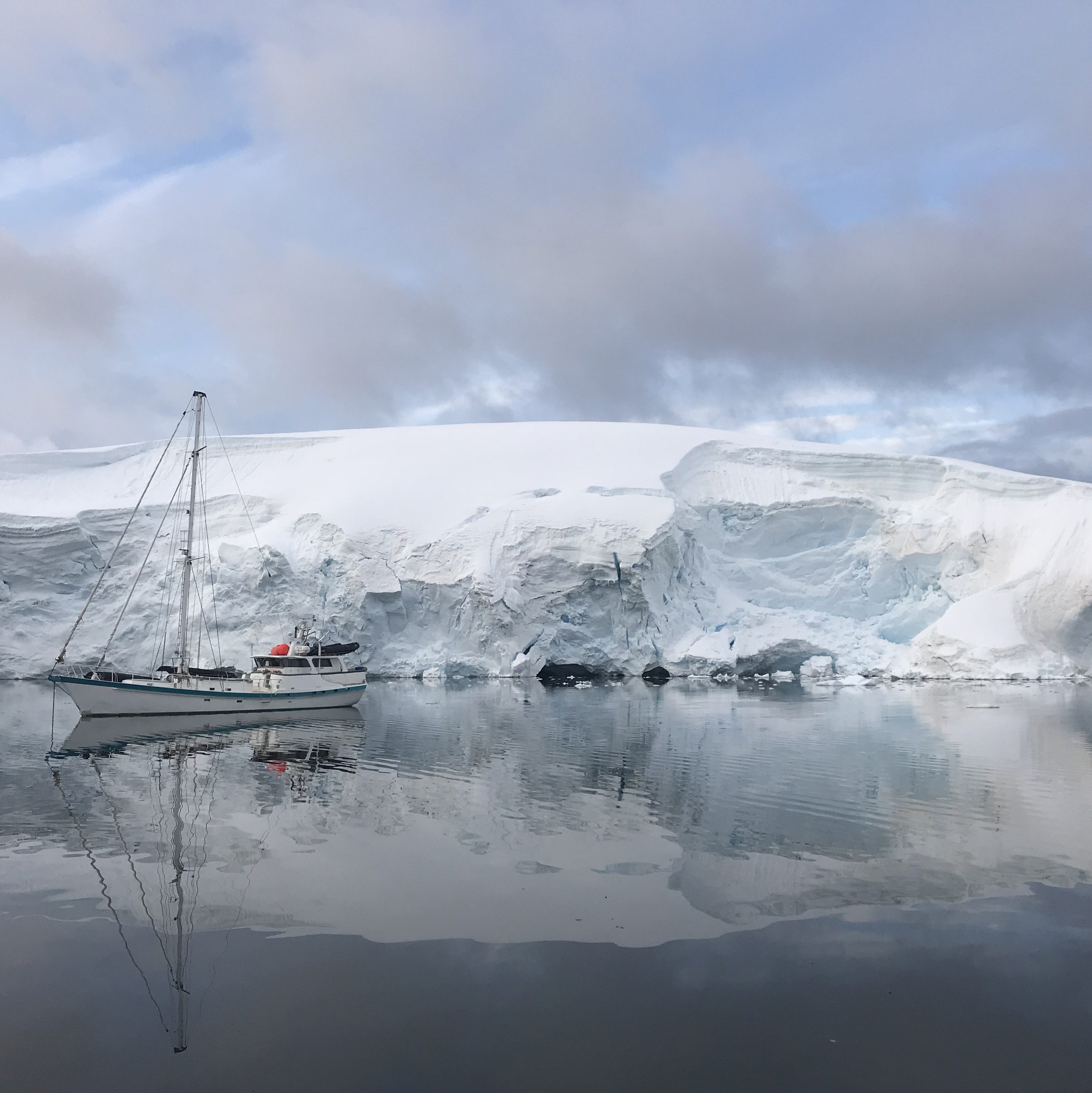 ANTARCTIC EXPEDITIONS